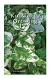 Knowing & Growing Ivy